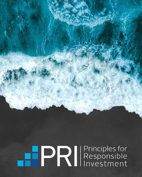 PRI's ESG Research Report of the Year